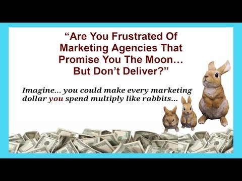 local online marketing services Calgary Best internet Marketers near me