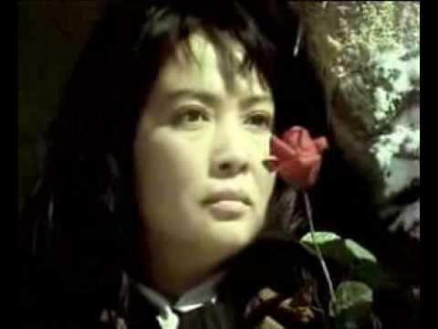电影《泪痕》主题歌《心中的玫瑰》/李谷一
