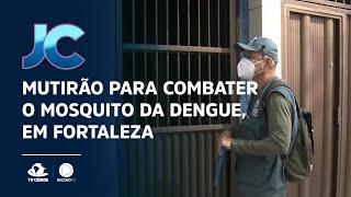 Mutirão para combater o mosquito da dengue, em Fortaleza