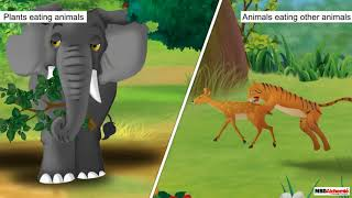 Class 3 Science - Living and Non-living Things | Differences between Plants and Animals