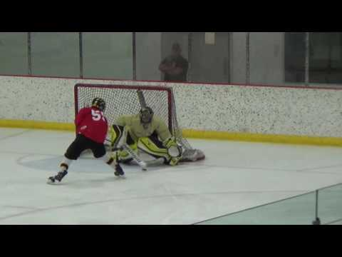 Week 9 Malkin Highlights: 2016 Quest Hockey 4 on 4 Summer League