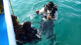 Goa Scuba Dive.wmv