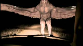 Mothman real or fake