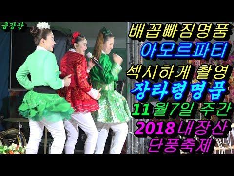 💗버드리 배꼽빠짐웃음대박명품💗11월7일 주간 2018 내장산 단풍축제 초청 공연