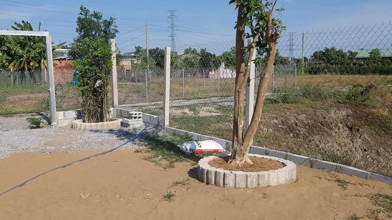 Bán đất lúa tại TT Cần Giuộc (30 x 40) giá 1,9 tỷ/ 1000m2, đã san lấp, rào lưới, đường xe hơi video
