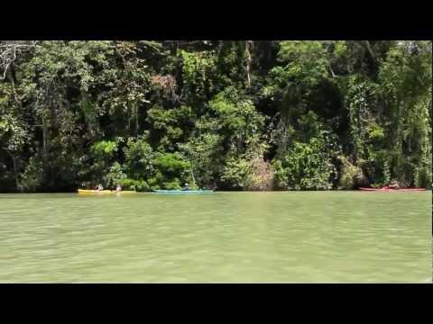 Experience Panama - Kayaking day in Gatun Lake