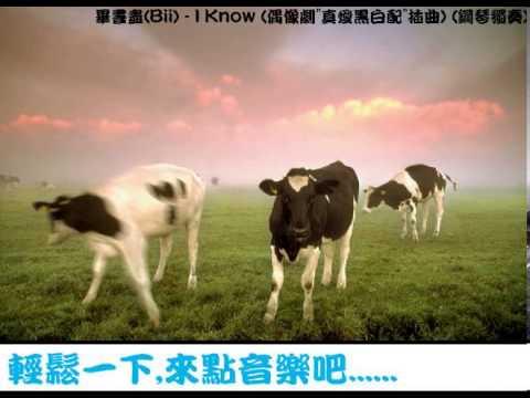 畢書盡(Bii) - I Know(偶像劇