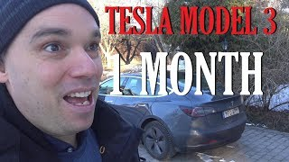 One month with my Tesla Model 3