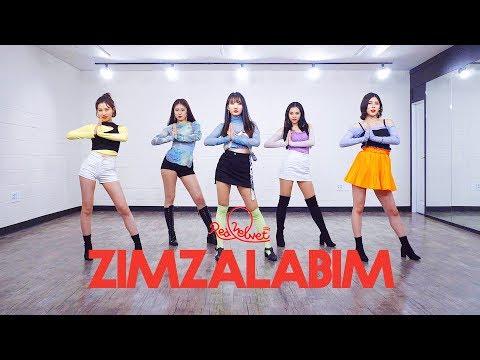 레드벨벳 Red Velvet '짐살라빔 (Zimzalabim)' | 커버댄스 DANCE COVER | 안무 거울모드 MIRRORED