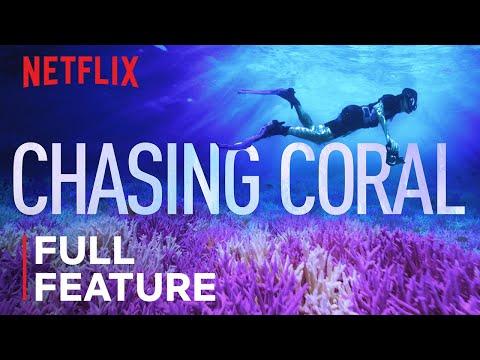 Ocean/Seas/Coastlines