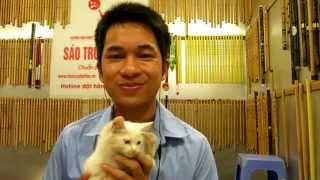 quảng bình quê ta ơi : Mão Mèo