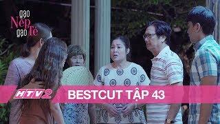"""GẠO NẾP GẠO TẺ - BESTCUT - Tập 43   Buồn tình, Minh """"mượn"""" rượu trút hết nỗi lòng - 20H, 13/08"""