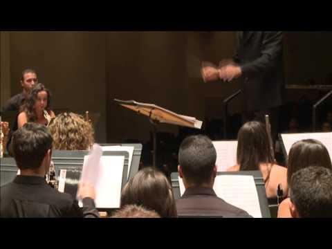 """Jove Banda Simfònica de la FSMCV """"Portillo Andaluz"""" de Juan Manuel Molina Millá"""