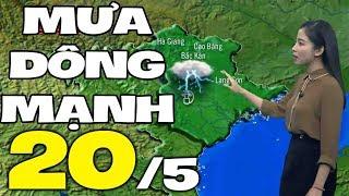 Dự báo thời tiết hôm nay và ngày mai 20/5 | Dự báo thời tiết đêm nay mới nhất