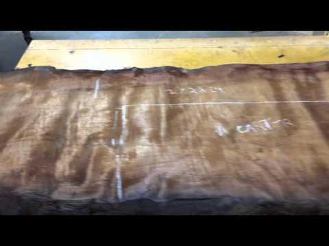Ancient Kauri MegaCurl 4439 SideB