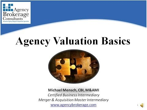 Insurance Agency Valuation Basics