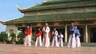 Hoang Phi Hong - Taekwondo