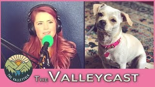 How Lee Saved Her Dog From Meth Addicts | The Valleycast, Ep. 23 (Highlights)