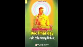 Hành đúng lời Đức Phật dạy chắc chắn được giải thoát - Đĩa 03