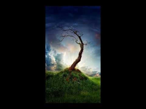 Medwyn Goodall - Awakening from the Dream.wmv