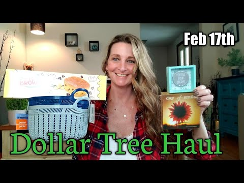 Dollar Tree Haul 🌼 NEW Items🌼 Feb 17