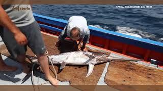 LaC Storie - Spada, cacciatori del mare - 14-07-2017