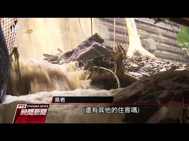 台東雨勢強 土石流灌入溫泉飯店餐廳