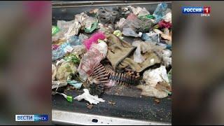 Опасная находка парализовала работу мусоросортировочного завода в Омске