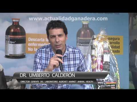 Entrevista al Dr Umberto Calderón - Revista Actualidad Ganadera. Peru, 2013