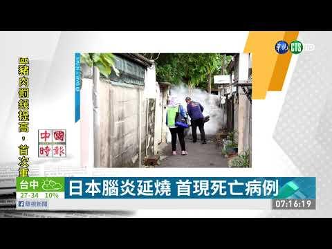 日本腦炎延燒 首現死亡病例 | 華視新聞 20190619