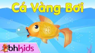 Cá Vàng Bơi - Hai Vây Xinh Xinh