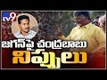 Election Fire: Chandrababu comments on Jagan