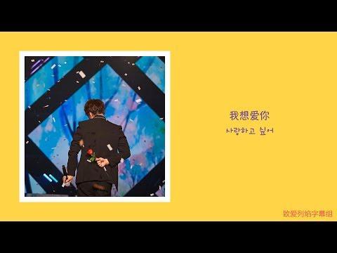 [黄致列/황치열] 'Look At You' 中韩字幕