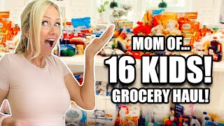 GROCERY SHOPPiNG HAUL for LARGE FAMiLY || MOM of 16!!