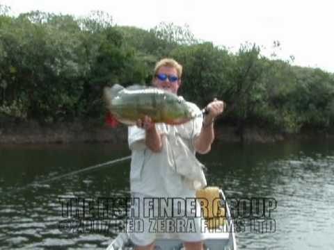Peacock Bass Fishing with Steve Townson - THE FISH FINDER!