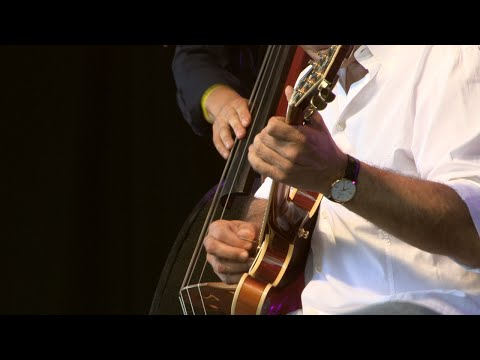 Birèli Lagrène | Just The Way Your Are (Festival Django Reinhardt 2015)