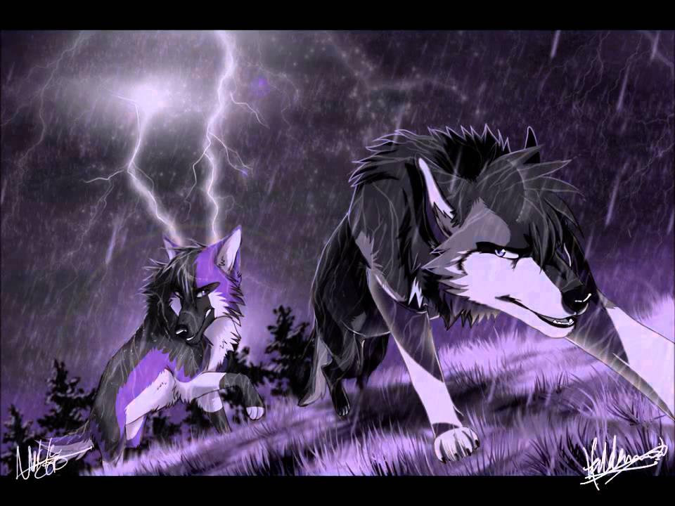 Anime wolves gravity of love youtube - Anime wolves in love ...