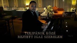 Csík Laci - Tulipánok közé rejtett igaz szerelem