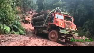 Xe chở gỗ siêu khủng