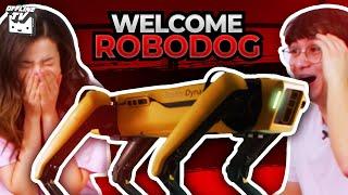 ROBODOG JOINS OFFLINETV