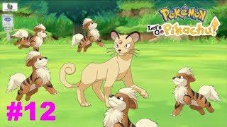 Pokémon Let's Go Pikachu /Gameplay/Cap 12/ Camino a Cueva Roca!