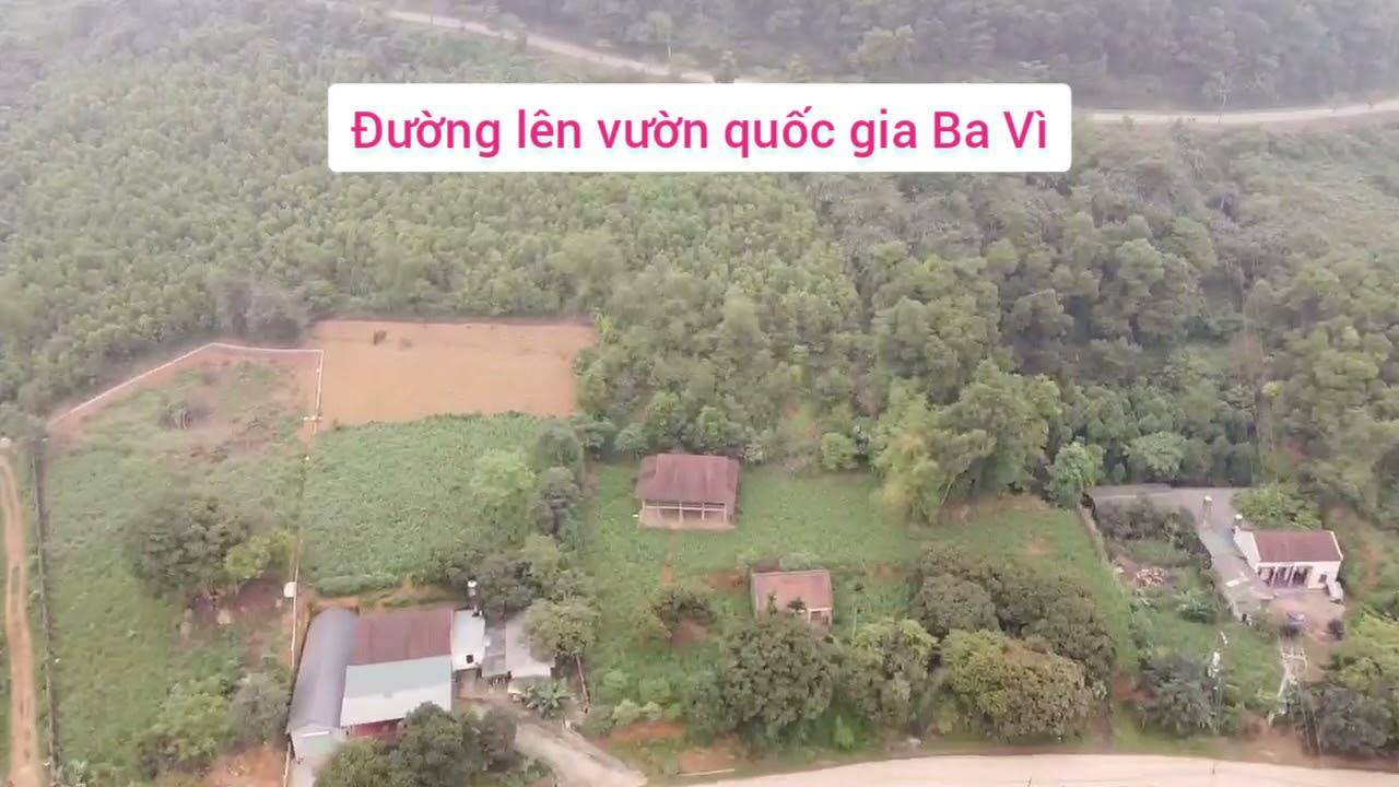 Bán gấp lô 575m2 xã Vân Hòa giá chỉ 1,5 tỷ cách TL84 đúng 500m. LH Ms Mai 0983517808 video