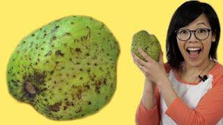 SOURSOP Fruit | Fruity Fruit Taste Test