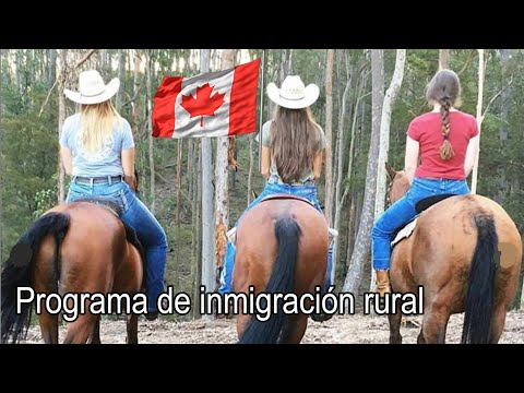 Pueblos con trabajo en Canadá ¿HAY SOLTER@S AHI? Inmigración rural y norte