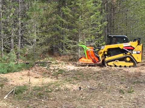 CAT 259D Standard Flow with an Advanced Forest Equipment  SS Mini Might mulching attachment
