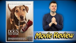 A Dog's Way Home - Movie Review