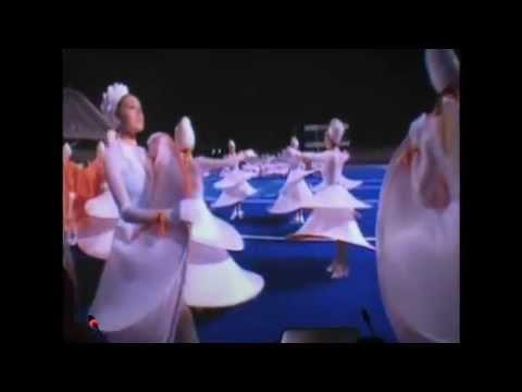 Matthew Barney 5. SCaRT Videoarte come immagine, corpo, sonorità