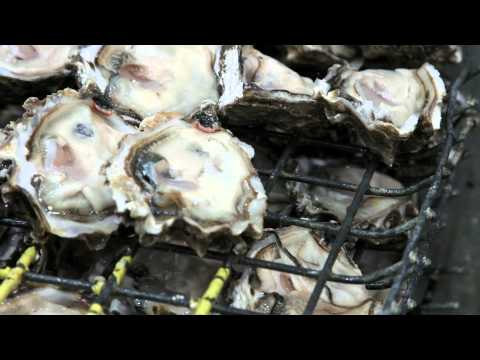 Shellfish Process - Taylor Shellfish Farms