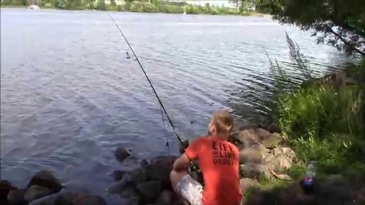 Рыбалка на Дубне – практические рекомендации