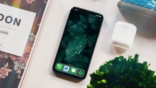 iPhone X Two Months Later: New Problems